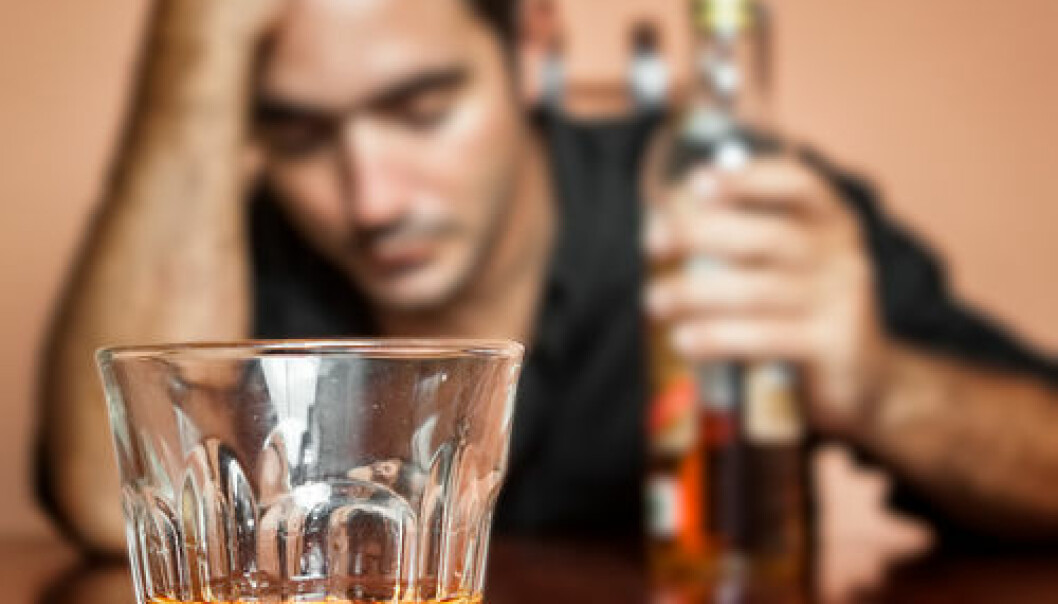 "It could be that some alcoholics have a particularly hard time quitting the alcohol because they have fewer intestinal bacteria than other people. (Photo: <a href=""http://www.shutterstock.com/da/pic-137241881/stock-photo-drunk-and-lonely-latin-man-holding-a-rum-or-whiskey-bottle-image-focused-on-his-drink.html?src=0epi7Yq58zBoHHB4rBw-YQ-1-7"" target=""_blank"">Shutterstock</a>)"