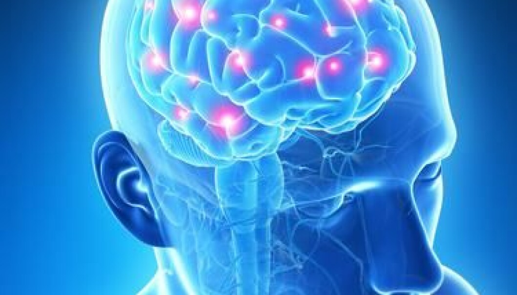 Danish and international scientists want to develop better scanning methods to unravel the hidden secrets of the brain. (Photo: Shutterstock)