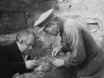 The Kostenki fossils were excavated in 1954. The photo shows the leader of the expedition, A.N. Rogachev (left) and M.M. Gerasimov (right). (Photo: Peter the Great Museum of Anthropology and Ethnography)
