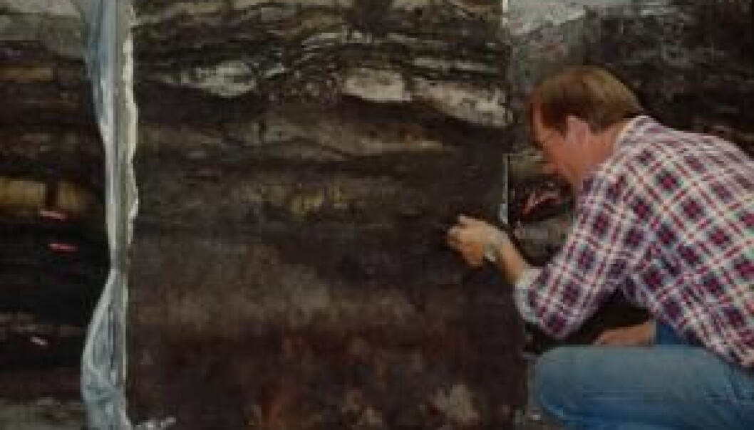 Archaeologist Stig Jensen at the dig at Sct Nicolajgade 8 in 1986. It was data from this dig that formed the basis for Croix's new analyses and conclusions. (Photo: Southwest Jutland Museums)