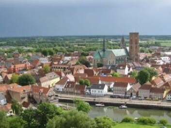 In Viking times Ribe was a important trading centre. The new study strongly suggests that Ribe became a town earlier than thought. This rocks the existing conception of Scandinavia's urban history. (Photo: visitribe.dk)