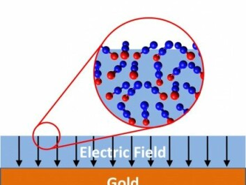 The illustration shows an example of how spontelectrics can occur: a thin film of laughing gas (N2O) is condensed on top of the surface of gold. In the large circle, the film of laughing gas has been enlarged in order to see the individual laughing gas molecules (blue = nitrogen, red = oxygen). The positively charged nitrogen end of the laughing gas molecule sticks out from the surface, creating a positive potential. (Illustration by post-doc Andrew Cassidy from Aarhus University, who is involved with research into spontelectrics).