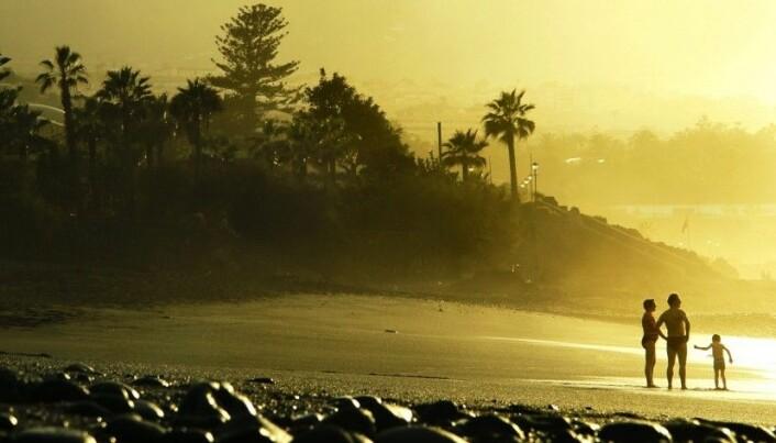 More sun means fewer children and grandchildren