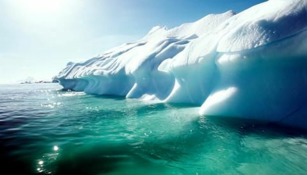 Warming of the Arctic may mean that fish from the Atlantic and Pacific will intermingle, new research predicts. According to the scientists this could have consequences for fishermen and local ecosystems alike. (Photo: Colourbox)
