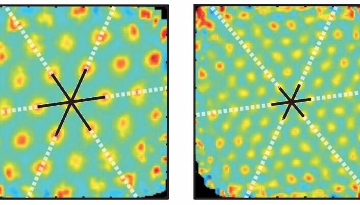 A new twist in understanding the brain's maps