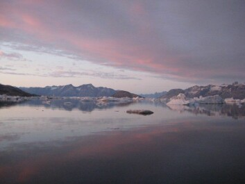 Sermilik Fjord. Previous studies concluded that it was primarily warm lower water layers that contributed to glacial melting in Greenland. But new Danish research indicates that other factors also play a role. (Photo: Camilla S. Andresen)