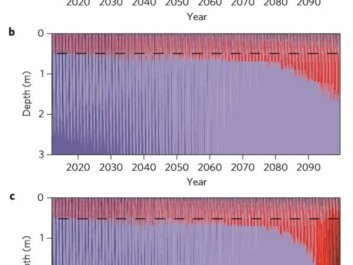 These figures show how the temperature of the permafrost will develop over the next 80-100 years, according to the scientists' computer models. Figure A shows that virtually nothing happens if climate change continues at a low level. Figure B shows the temperature trend predicted if global warming really takes hold, and figure C shows the combination of this strong global warming and the heat generated from within the permafrost by active bacteria. Around 2100 AD the heat production in the permafrost gathers real momentum and reaches its so-called tipping point. (Illustration: Jørgen Hollesen et al.)