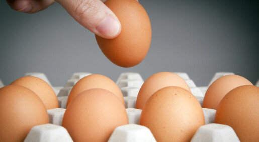Eating more eggs may reduce risk of diabetes
