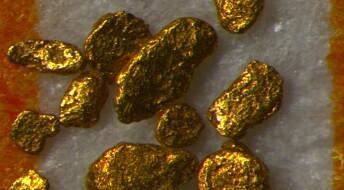 Gold deposits found in Denmark
