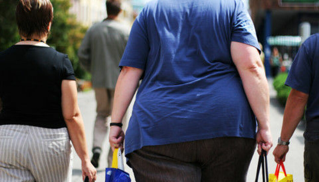 Obesity sometimes runs in the family but the fact that so many today are obese cannot be explained by genes or lifestyle alone, shows new study. (Photo: Colourbox)