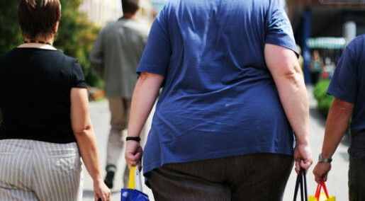Obesity epidemic is not caused by genes or lifestyle