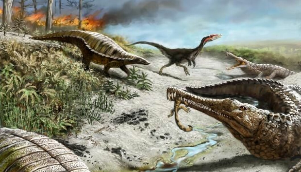 For 30 million years, large forest fires and climate change made the equator a no go zone for the large herbivorous dinosaurs. (Illustration: Victor Leshyk)