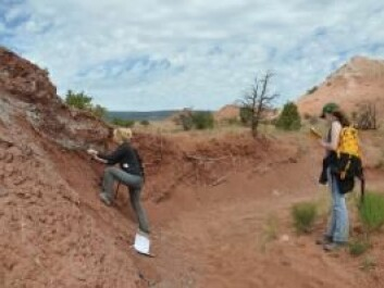Scientists examining rocks at Ghost Ranch, New Mexico. The rocks tell us what life was like at the equator 212 million years ago. (Photo: Randall Irmis)