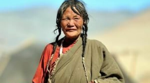 When did Tibetans have sex with prehistoric humans?