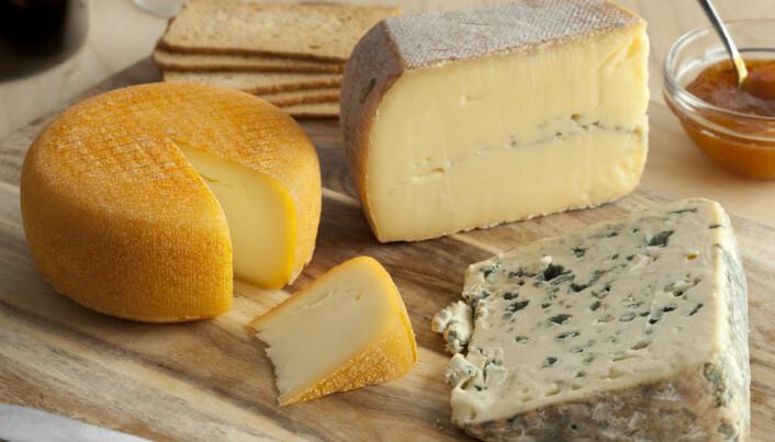 Can cheese help keep heart disease at bay?