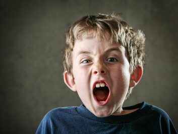 """Some children with ADHD cannot function in a classroom environment. (Photo: <a href=""""http://www.shutterstock.com/pic-59907679.html"""" target=""""_blank"""">Shutterstock</a>)"""