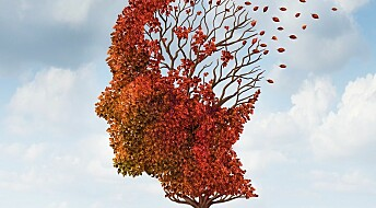 Alzheimer's prevention can vary between populations