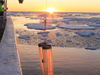 Sampling the icy waters of the North Atlantic Ocean for copepods (Photo: Sigrún Jónasdóttir)
