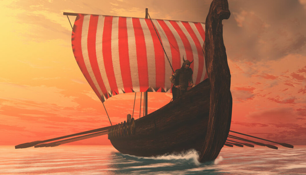 "Why did the Norsemen cross the Atlantic to settle Greenland in the Middle Ages? Was it the possibility of profiting from the coveted trade in walrus tusks that drove them? (Photo: <a href=""http://www.shutterstock.com/da/pic-239380048/stock-photo-viking-man-and-longship-a-viking-longboat-sails-to-new-shores-for-trading-and-companionship.html"" target=""blank_"">Shutterstock</a>)"