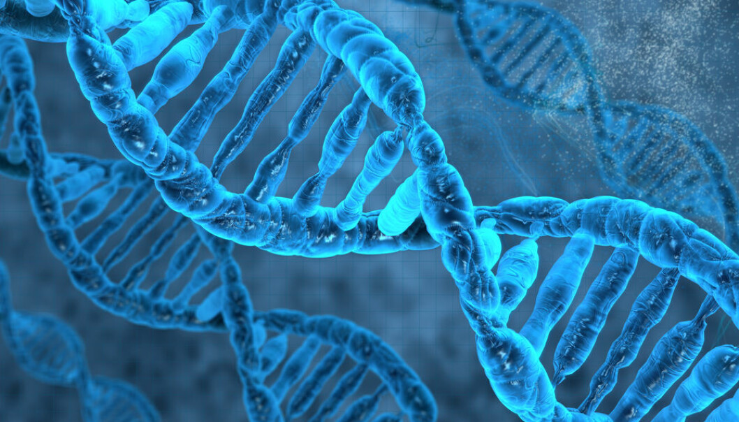Researchers have found a key mechanism by which cells can repair their own damaged DNA. The new results have implications for developing new, preventative cancer treatments. (Photo: Shutterstock)