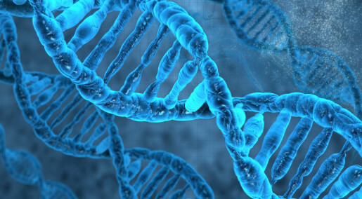 How our cells repair their damaged DNA