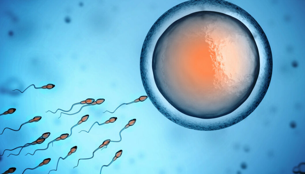 Sperm cells preserve information on men's weight. (Photo: Shutterstock)