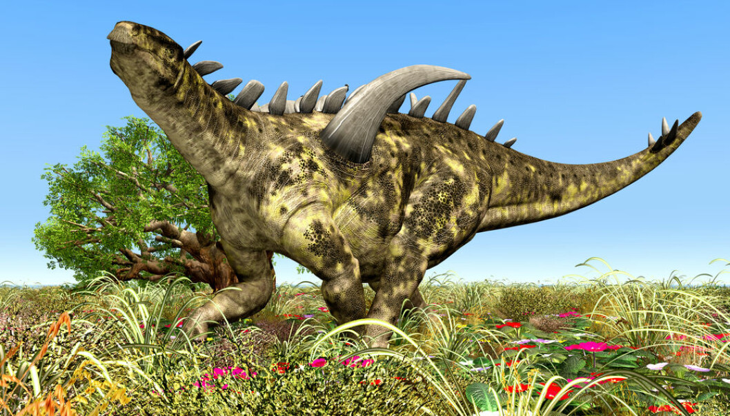 """The discovery of the fossilised seeds gives a unique insight into the flowering plants of the dinosaur age. (Illustration: <a href=http://www.shutterstock.com/da/pic-153581663/stock-photo-dinosaur-gigantspinosaurus-computer-generated-d-illustration.html target=""""blank_"""">Shutterstock</a>)"""
