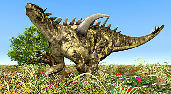 Scientists discover flower seeds from the dinosaur era