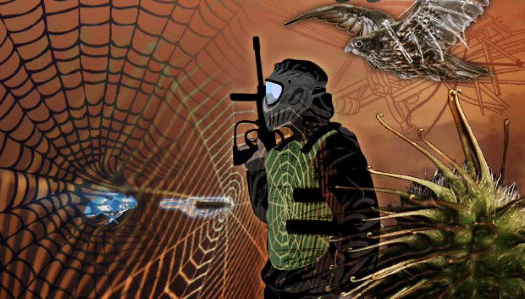 Velcro, inspired by burrs from the burdock plant, is the best-known example of bionics. Future products could include bulletproof vests spun from artificial spider web filaments. (Illustration: Mette Friis-Mikkelsen)