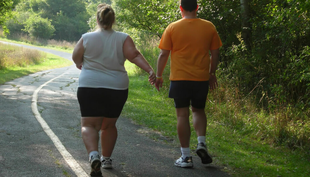 """Obese people develop more infections than those of a healthy weight, shows new research. (Photo: <a href=http://www.shutterstock.com/da/pic-1220075/stock-photo-large-people-walking-on-trail.html target=""""blank_"""">Shutterstock</a>)"""