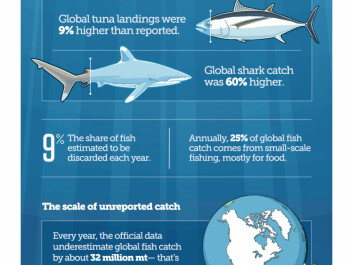 How much fish are we really catching? An infographic describes the full extent of overfishing, found to be among the top concerns among marine scientists when it comes to the threats facing the ocean. (Illustration: The Pew Charitable Trusts)
