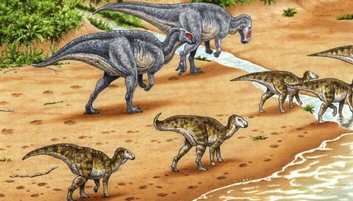 Northern carnivorous dinosaur was a vegetarian