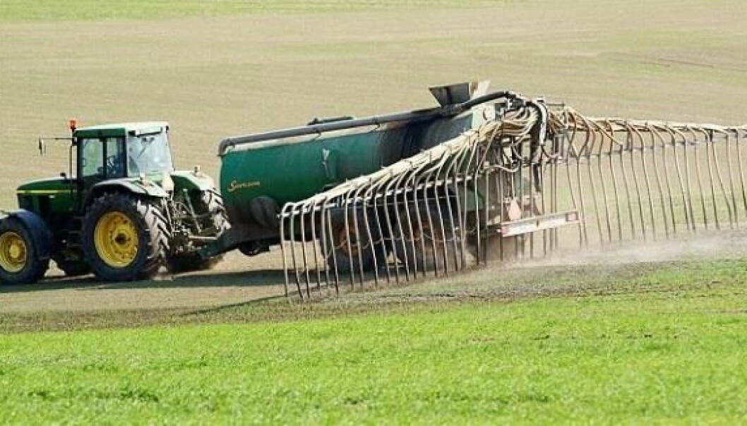 Animal manure and slurry can spread antibiotic resistance, shows new research. It is the first evidence of such a clear association between the use of manure and the occurrence of antibiotic resistance in soil bacteria. (Photo: Colourbox)