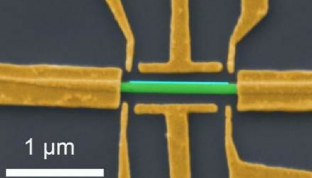 A nanowire (green) coated with a thin layer of aluminium (blue) connected to electrodes. These allow physicists to measure Majorana modes. The thread is less than a millionth of a metre thick. (Image: Nature)