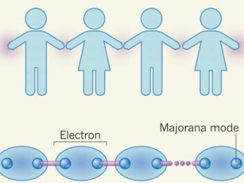 Each electron in the superconducting semiconductor behaves as if it is paired with another electron, like people holding hands in a row. At the end of the chain are Majorana modes. (Illustration: J. Alicea / Nature)