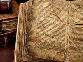 The so-called Hauksbok from 1300 CE. The book includes the story of Ragnar Lodbrog's sons. (Photo: University of Copenhagen)