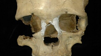 Ice Age Europeans migrated back to Africa