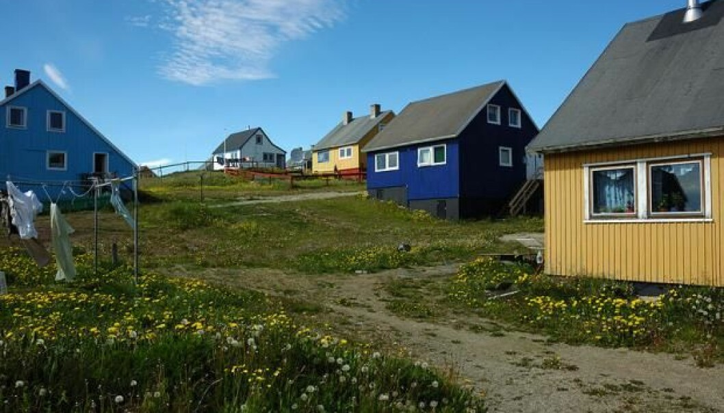 The town of Narsaq (meaning 'plain' in Greenlandic) is located in south west Greenland. The town has two leading industries: fishing and sheep farming. But soon mining could be added to the list. (Photo: Adrian boliston / Flickr / Wikimedia Commons)