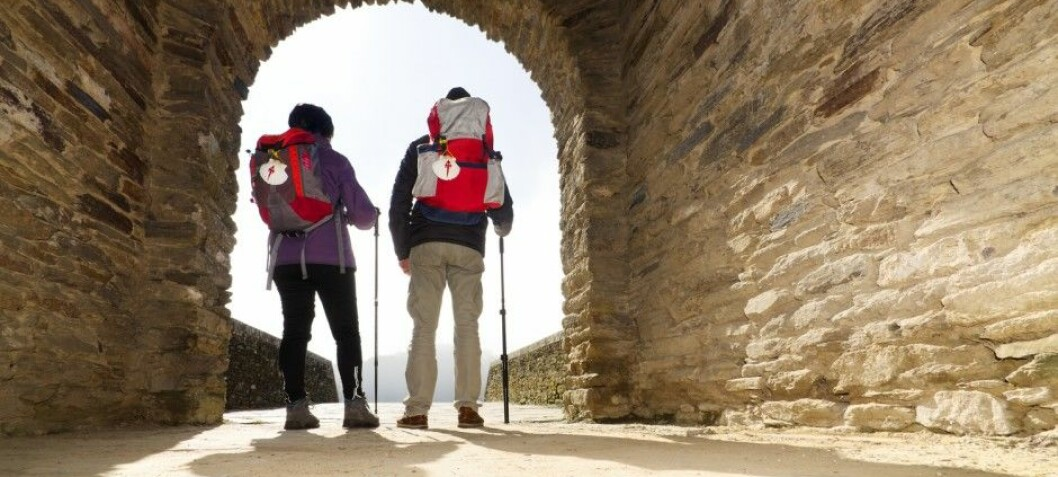 Finding answers on a pilgrims' trail