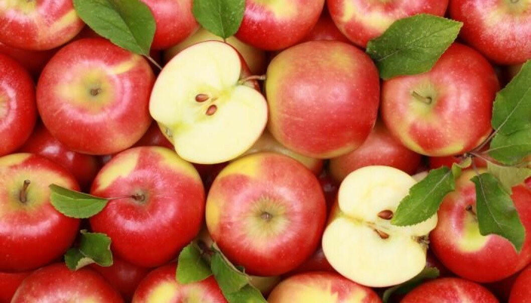 Apple peel is just as high in vitamins as the rest of the apple put together. But vitamin C is also highly variable among different apple varieties. (Photo: Shutterstock)
