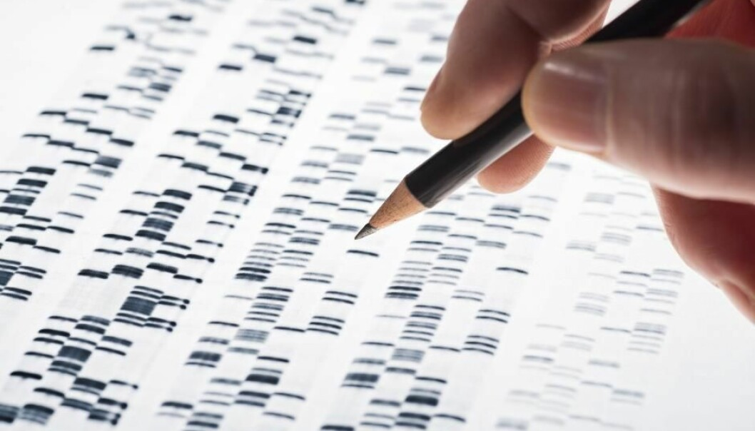Cancer genes remain inactive, so long as they remain isolated and protected within the DNA-structure. But they can become activated as soon as this changes. The new discovery could lead to new treatments and cancer screening methods in the future. (Photo: Shutterstock)