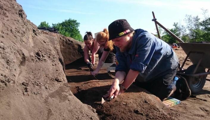 Danish Viking grave reveals archaeological mysteries