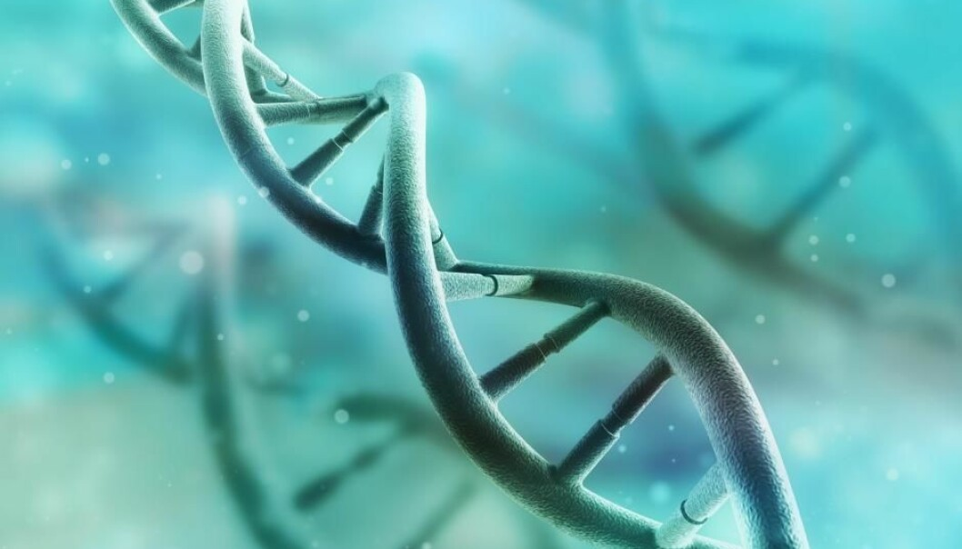 New study shows that genes affect people's social ideological orientation, such as attitudes towards border controls and measures to tackle terrorism (Photo: Shutterstock).