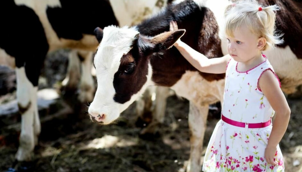 A rural upbringing protects children against irritated airways and allergies later in life, shows new research. (Photo: Shutterstock)