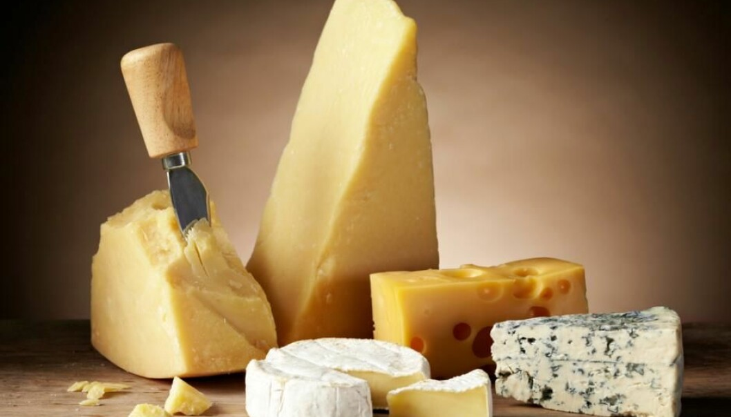 Brie, Gouda, Cheddar, and Parmesan. Whatever your preference, it seems that, health wise, there are no major differences between them. (Photo: Shutterstock)