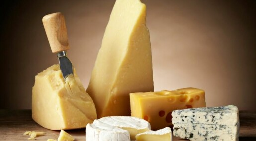 High-fat cheese can be part of a healthy diet