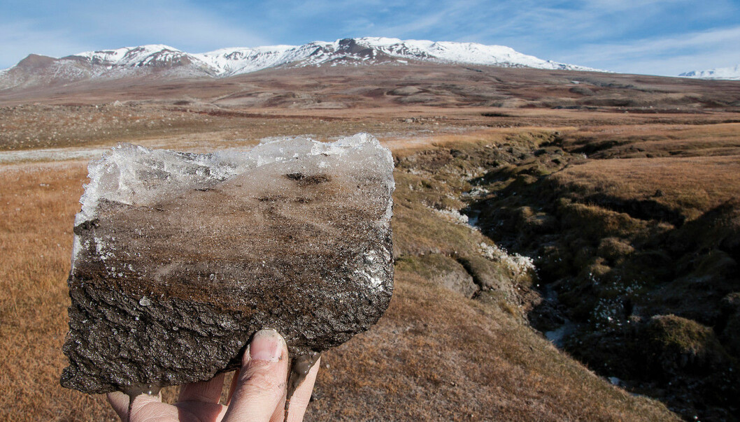 Rapidly warming Arctic soils could speed up carbon release by respiring microbes, adding an additional 12 to 17 per cent carbon dioxide to the atmosphere and accelerating climate change. (Photo: Bo Elberling)