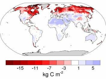 Map of predicted soil carbon loss (red shading) and gain (blue shading) by 2050 due to warming. Greatest losses are in the Arctic and subarctic (dark red shading). Some of these losses occur in agricultural land and could be reduced by changing farming practices. But large swathes are sparsely habited or uninhabited permafrost and boreal forest. (Photo: Crowther et al. 2016 / Nature)