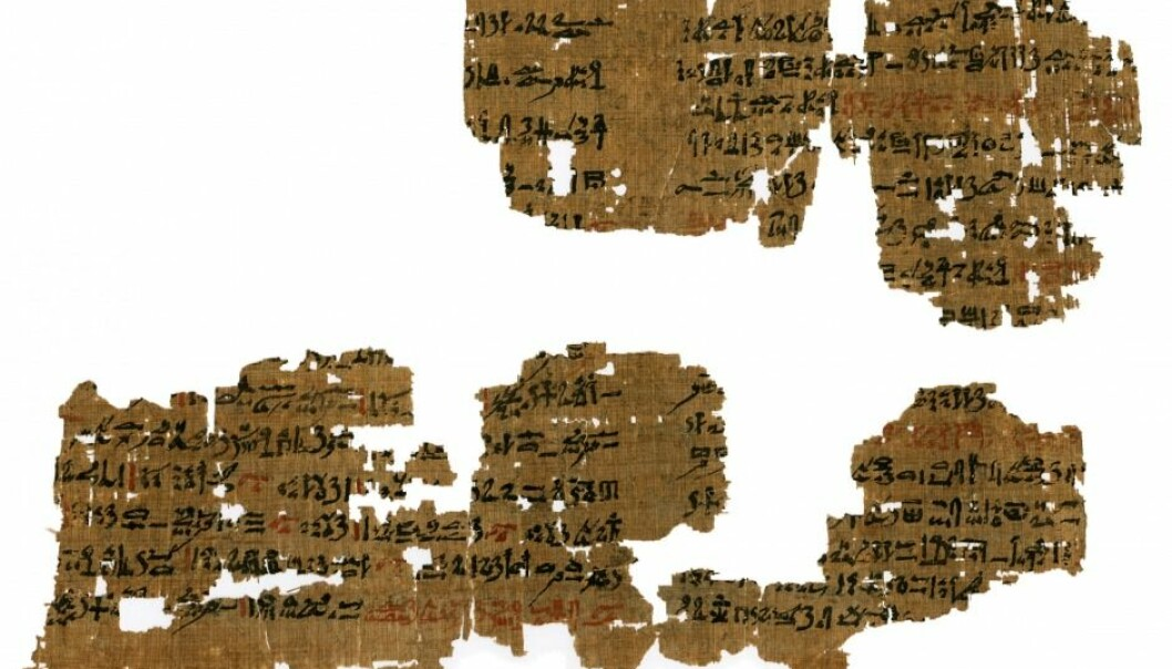 Spells and lizard dung were part of the medical treatment in ancient Egypt, as evidenced by this 3,500-year-old papyrus. (Photo: Mikkel Andreas Beck).