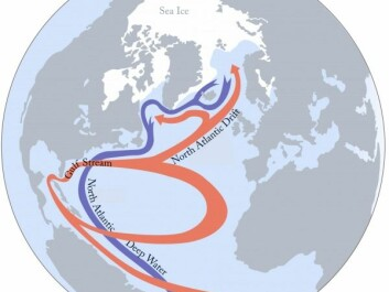 The AMOC describes the circulation of fresh and salty water in the North Atlantic. Relatively warm surface waters from the equator (red) mix with cold, salty water from the north and sink to the ocean floor (blue). This conveyor belt of ocean water maintains the delivery of warm water and weather to the northeast USA and northwest Europe. (Illustration: S. Rahmstorf (Nature 1997), Creative Commons BY-SA 4.0.)